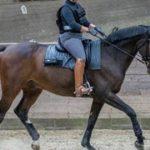 csm rytter ridevest vaegt f430b4d481 150x150 - Populær ridesport appellerer bredt til alle