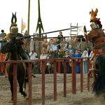 filename ridderdyst 1 150x150 - Populær ridesport appellerer bredt til alle